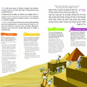 Living Lessons Haggadah Sample Pages